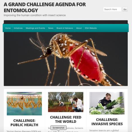grand challenges website