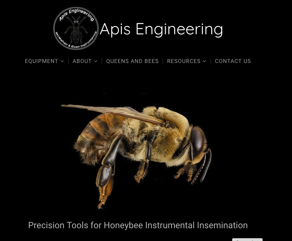 Screen Shot of Apis Engineering Home page